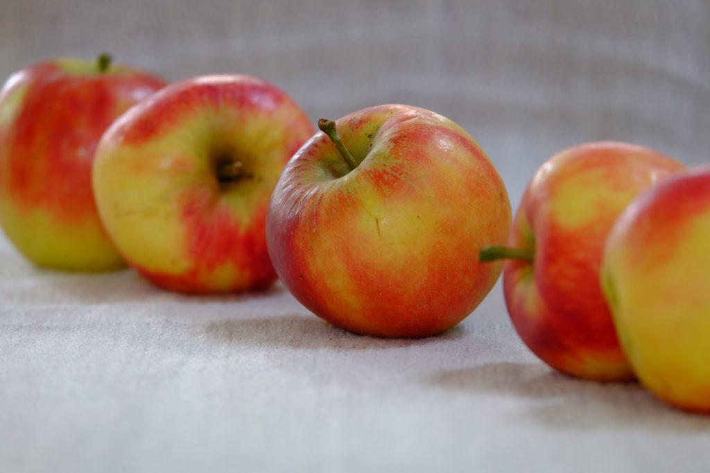 drastická diéta- ovocná diéta
